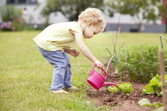Little girl standing in the garden watering lettuce — Stock Photo
