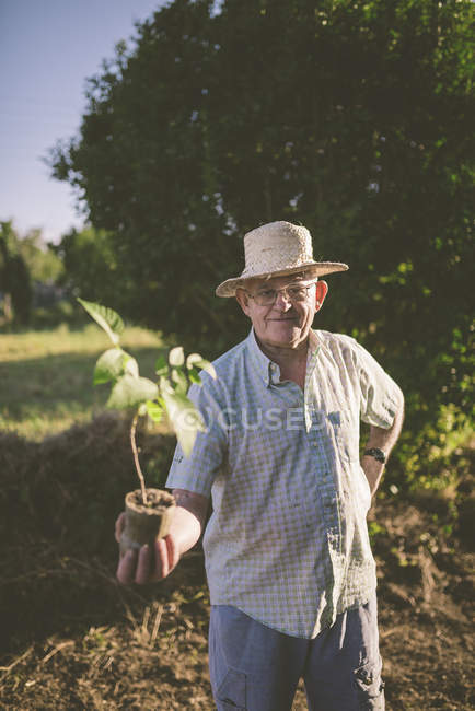 Portrait of smiling farmer wearing straw hat holding potted plant in his hand — Stock Photo