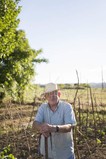 Portrait of farmer with straw hat standing in front of his fields — Stock Photo