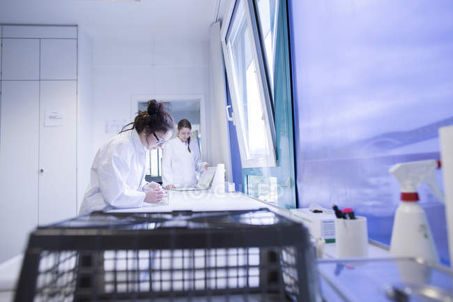 Focused laboratory assistants checking samples — Stock Photo