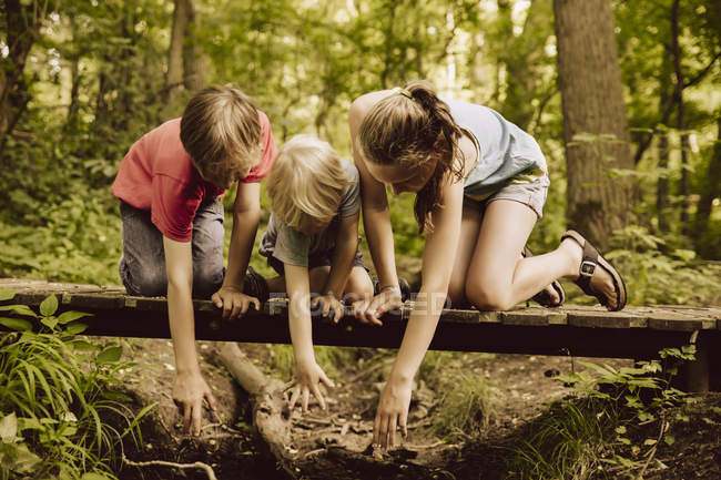 Three children reaching down from a small bridge in forest — Stock Photo