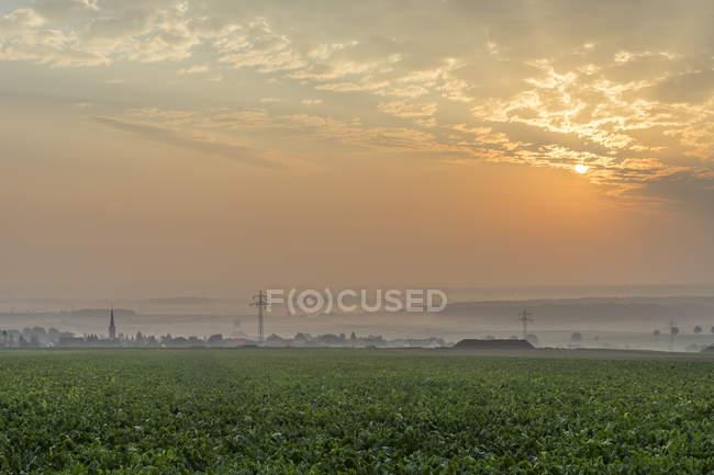Вид на осінній Туманний sunrise в Koenigslutter, Нижня Саксонія, Німеччина — стокове фото
