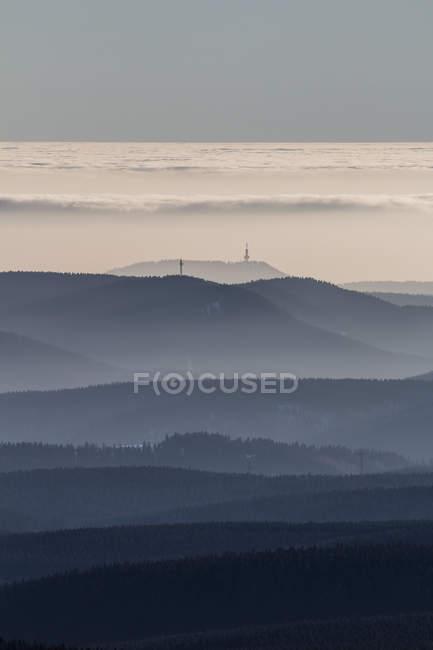 Deutschland, Sachsen-Anhalt, Nationalpark Harz, Nadelwald, atmosphärischen inversion — Stockfoto