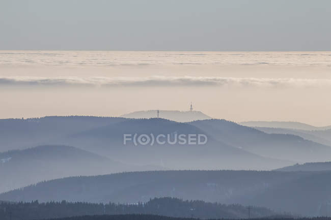 Alemania, Sajonia-Anhalt, Parque Nacional de Harz, bosque de coníferas, inversión atmosférica - foto de stock