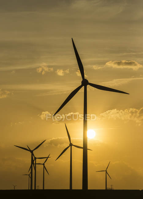 Germany, Salzgitter, wind park in the evening, sun on background — Stock Photo