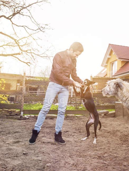 Uomo formazione il suo cane mentre irlandese Wolfshound li guarda — Foto stock