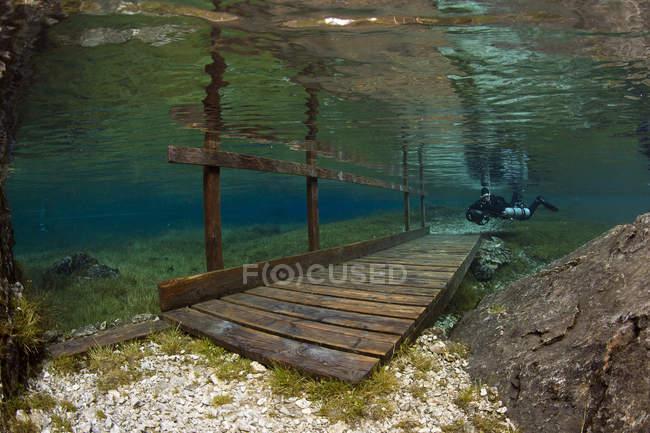 Buzo macho y puente inundado sobre el lago Gruener Ver - foto de stock