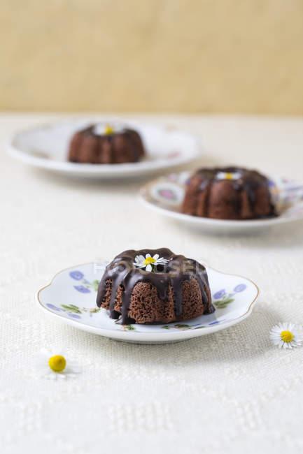 Мини-шоколадные торты с съедобных цветов на пластины — стоковое фото