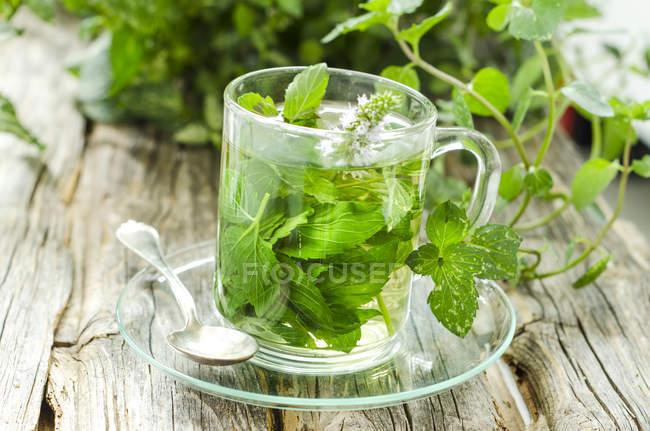 Verre de thé à la menthe poivrée sur table en bois — Photo de stock
