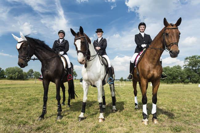 Портрет трех всадников на лошадях на лугу — стоковое фото