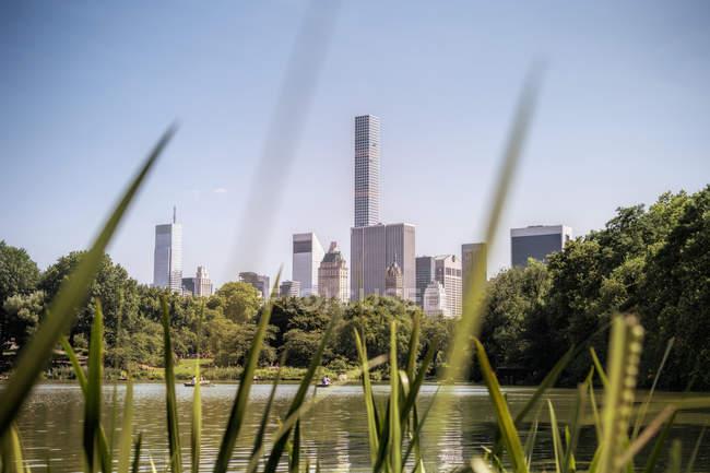 Estados Unidos, Nova York, barco a remo no lago no Central Park, o horizonte da cidade e lâminas de grama em primeiro plano — Fotografia de Stock
