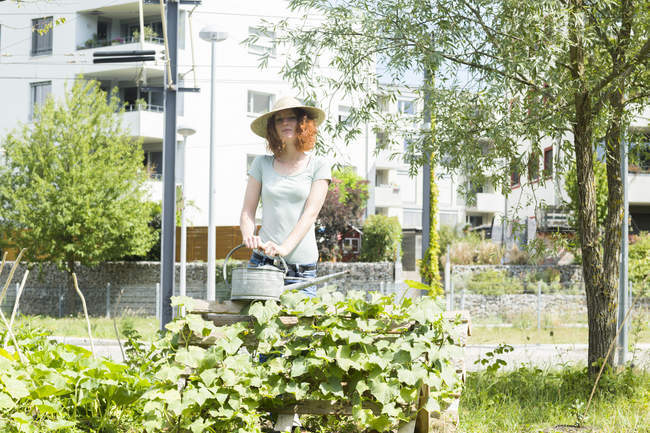 Young woman gardening, urban gardening, raised bed, watering — Stock Photo