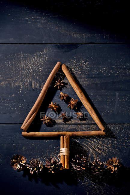 Bâtons de cannelle et anis étoilé en forme comme un sapin de Noël — Photo de stock