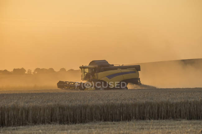 Combine harvester on field sunset, Lower saxony, Germany — Stock Photo