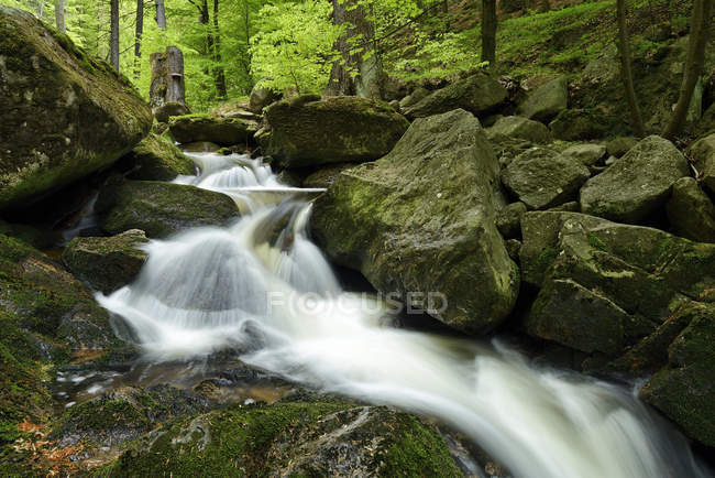 Deutschland, harz, ilse am Nationalpark Harz — Stockfoto