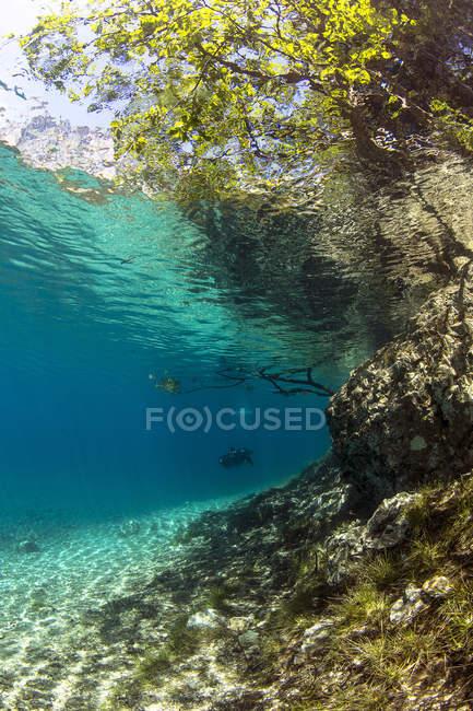 Hombre nadando en el lago Gruener ve durante el día - foto de stock