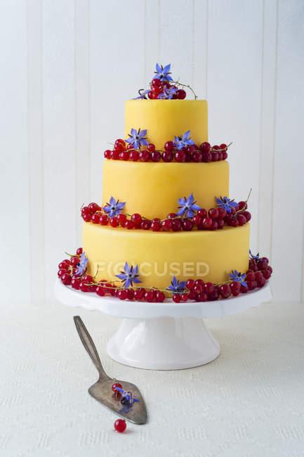 Пирожные с помадной покрытием оформлены с красной смородиной и огуречника цветы — стоковое фото