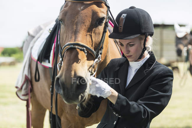 Портрет всадника и лошади на открытом воздухе — стоковое фото