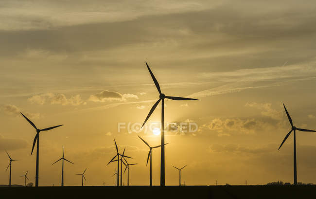 Germany, Salzgitter, wind park view with wind mills at sunset — Stock Photo