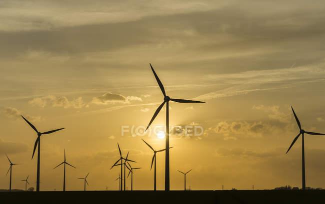 Alemanha, Salzgitter, vista do parque eólico com moinhos de vento ao pôr do sol — Fotografia de Stock