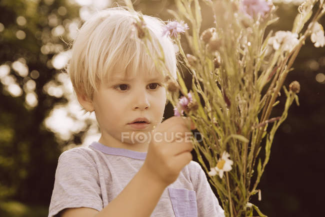 Boy looking at bunch of thistles and meadow flowers — Stock Photo