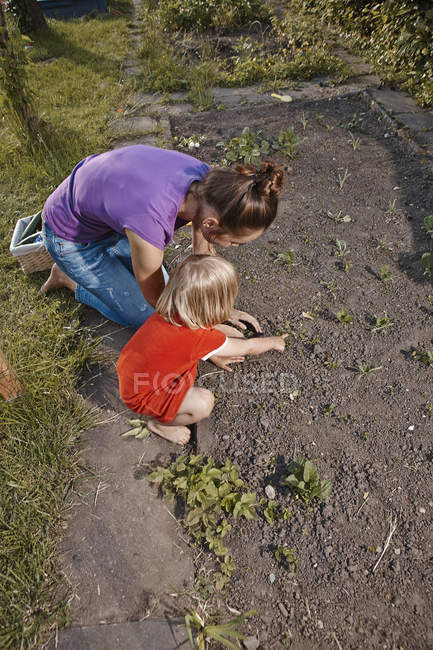Mother and daughter planting seedlings in garden — Stock Photo