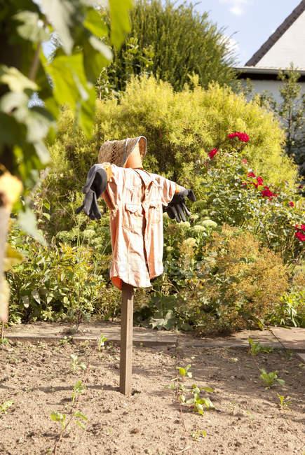 Jardim com espantalho contra plantas — Fotografia de Stock