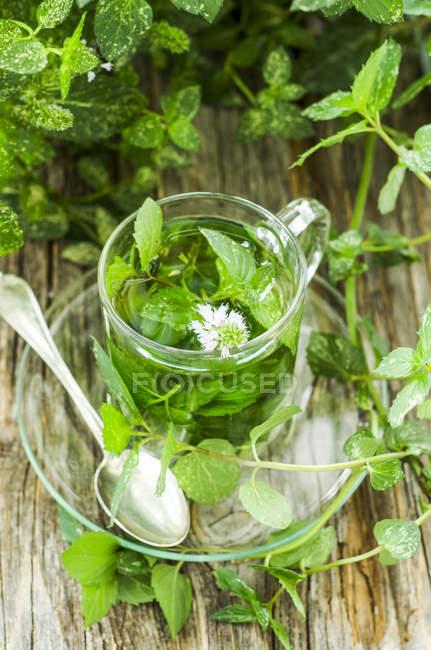 Verre de thé à la menthe poivrée sur table — Photo de stock