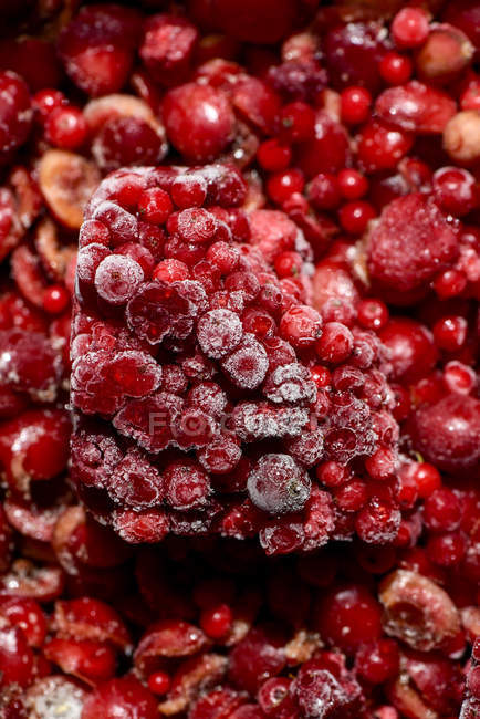 Close-up of Deep frozen organic fruits and berries in heap — Stock Photo
