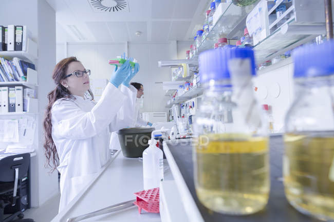 Lab technicians examining sample in laboratory — Stock Photo