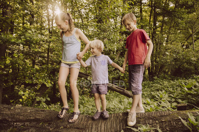 Three children balancing on fallen tree in forest — Stock Photo