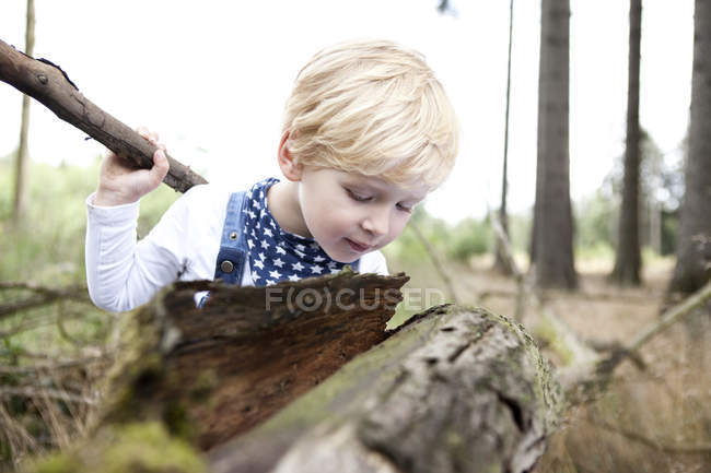 Little boy discovering nature — Stock Photo