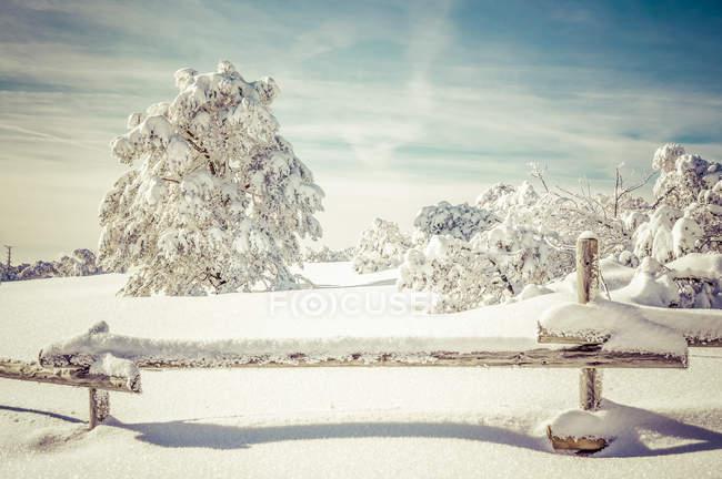 Germany, Baden-Wuerttemberg, Black Forest, Schliffkopf, snow-covered landscape — Stock Photo