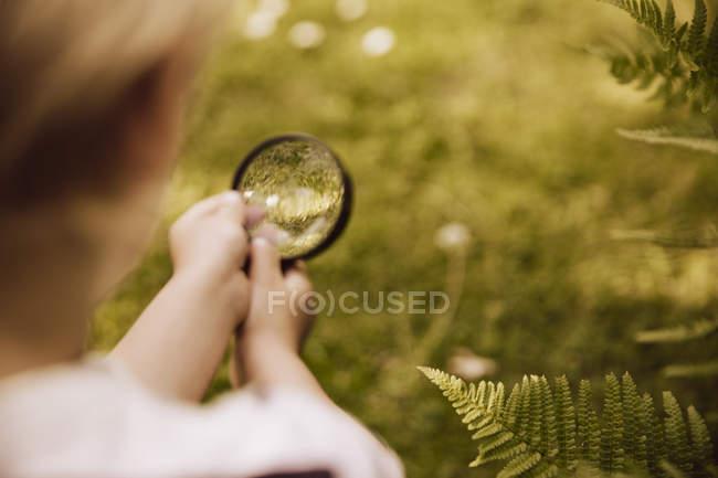 Мальчик смотрит через лупу на лист папоротника — стоковое фото