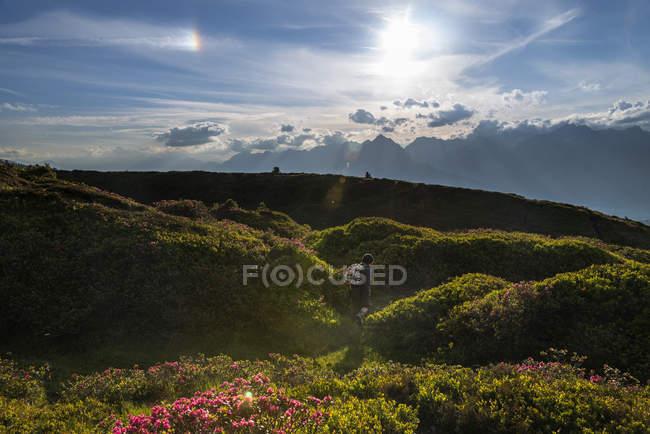 Austria, Tyrol, hiker walking in mountainscape — Stock Photo