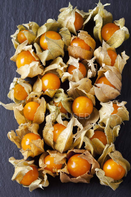 Fresh Physalis with dried flowers — Stock Photo