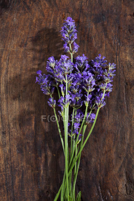 Lavender blossoms on dark wood — Stock Photo