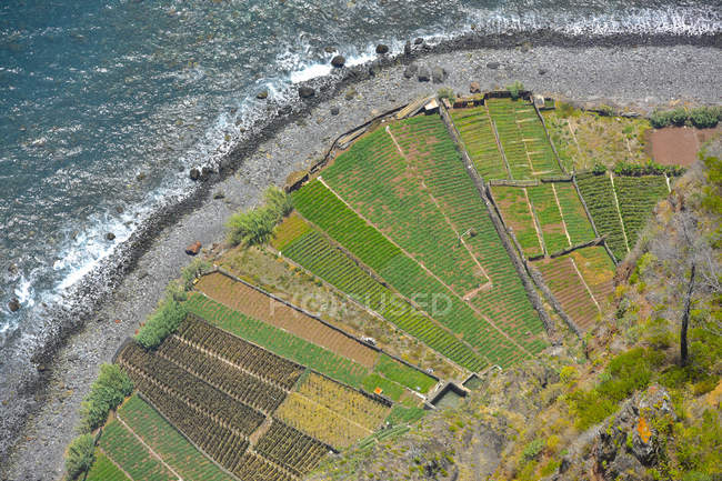 Portugal, Madeira, Cabo Girao, Ver os campos de terraço e praia — Fotografia de Stock