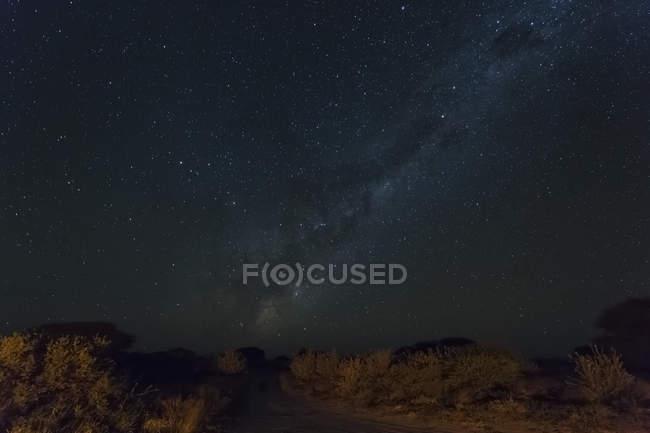 Botswana, Kalahari, Central Kalahari Game Reserve, starry sky with milky way — Stock Photo