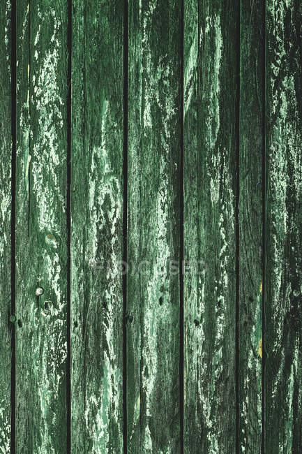 Wooden texture, green wood — Stock Photo