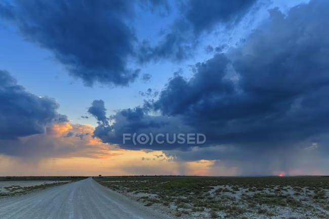Сценический вид Намибии, Этоша Национальный парк на закате — стоковое фото