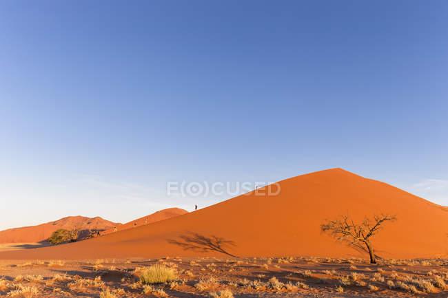 Намибия, пустыня Намиб, Namib-Naukluft Национальный парк, туристов, гуляющих по пустыне дюны — стоковое фото