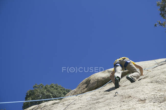 Man climbing in a granite wall, rear view — Stock Photo