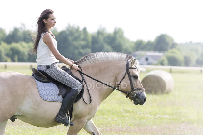 Teenage girl riding on a horse — Stock Photo