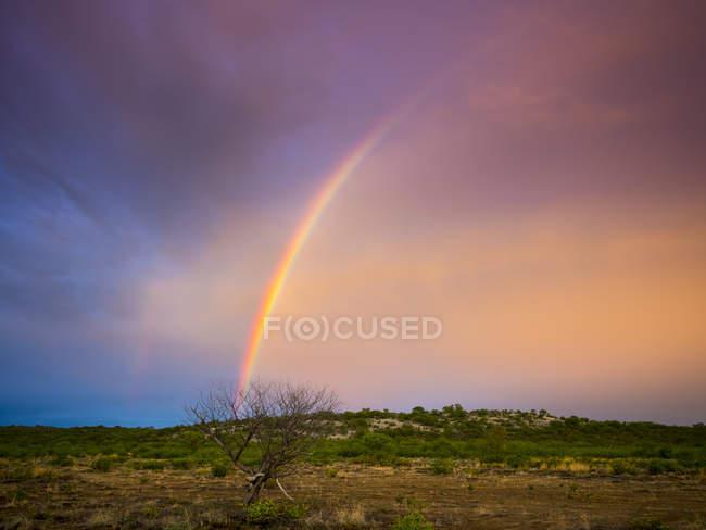 Arco iris colorido Namibia, Outjo, paisaje desierto - foto de stock