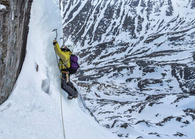Uomo durante il ghiaccio arrampicata al Ben Nevis, Scozia, Regno Unito — Foto stock