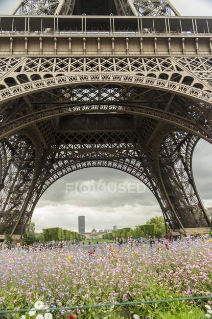 Francia, Parigi, Torre Eiffel vista dal basso e fiori in primo piano — Foto stock