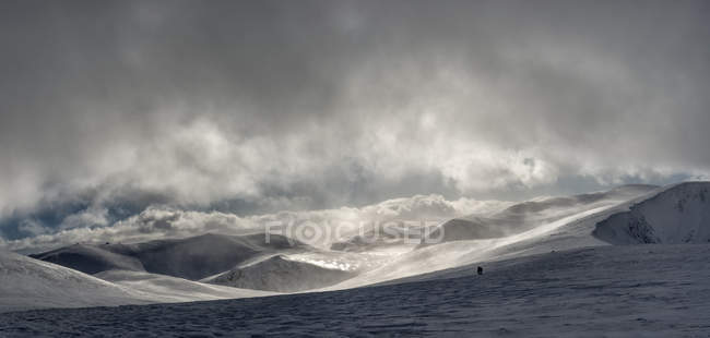 United Kingdom, Scotland, Cairngorms, people in the background — Stock Photo