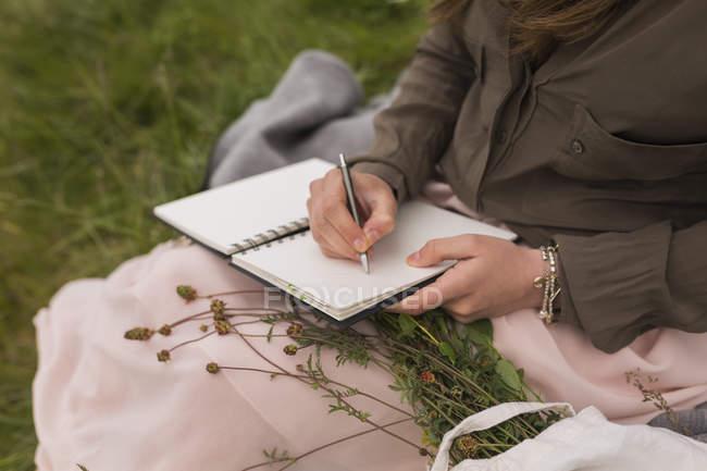 Молода жінка, сидячи на луг записувати те, що в її ноутбук, і частковим видом — стокове фото