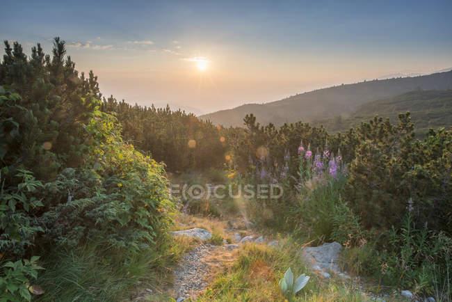 Bulgarie, chaîne de montagnes Rila au lever du soleil — Photo de stock
